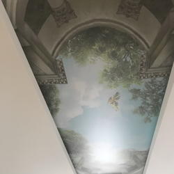 Printed stretch ceiling 3D mural