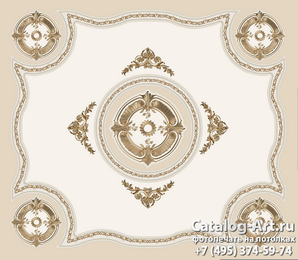 Palace ceilings 61