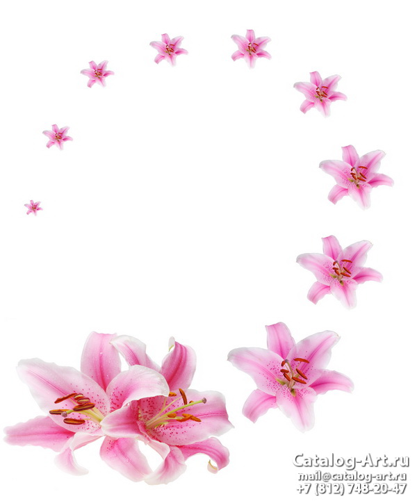 Pink lilies 8